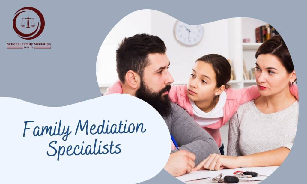 What can you certainly not state in child custodianship mediation?