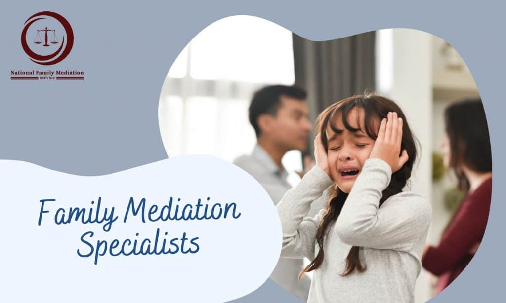 What can you certainly not state in child safekeeping mediation?