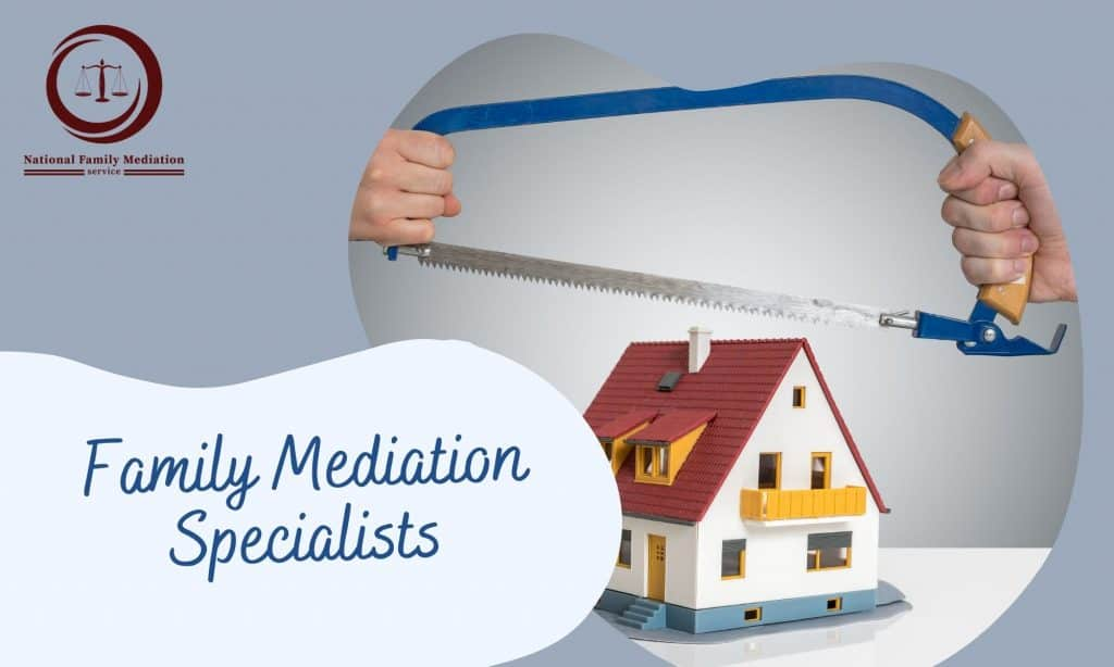 What carries out family mediation include?